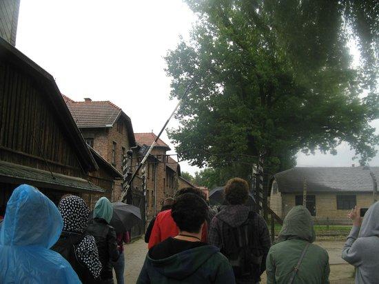 Krakow Discovery - Auschwitz Salt Mine Tours: Entering Auschwitz