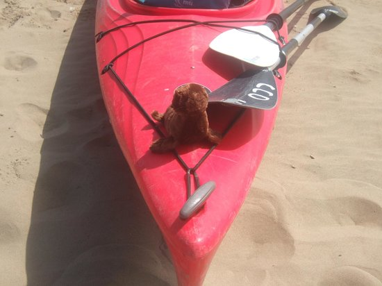 Central Coast Outdoors: Ralph chilling on his kayak