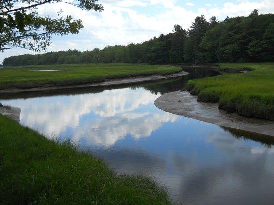 Rachel Carson National Wildlife Refuge: Salt marsh