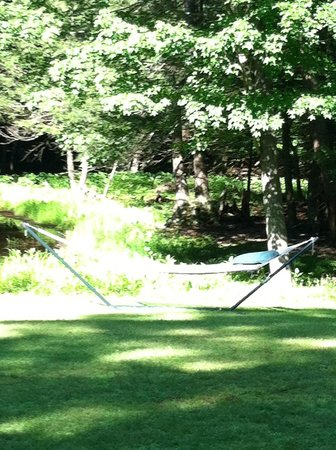 Hungry Ghost Guest House: The Hammock By The Pond