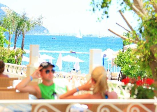 Hawaii Hotel: View from Sunset Veranda