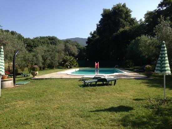 Al Casolare: piscina e solarium