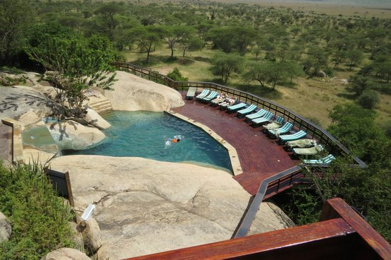 Seronera Wildlife Lodge: Pool area