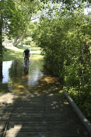 Concord Bike Tours: biking through a BIG puddle!