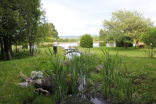 Stornoway, Canada: Spring-fed stream and large pond attracts birds.