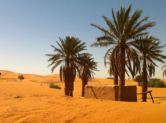 Ksar Merzouga: Les alentours de Ksar Sania