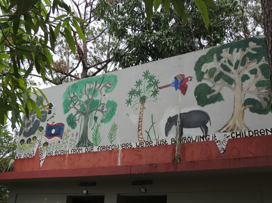 Monkey Bay Wildlife Sanctuary: Paintings on the buildings