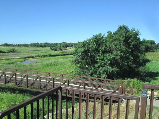 Crane Trust Nature & Visitor Center: From the observation tower