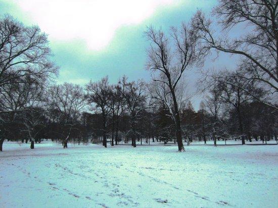 Tower Grove Park: so peaceful
