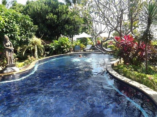 Sawah Lovina Bungalows: piscine