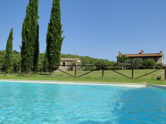 Fattoria Voltrona: zwembad met het huisje op de achtergrond