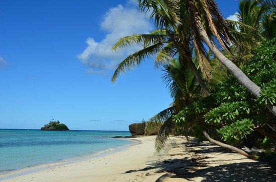 Turtle Island Resort: Paddy's Island