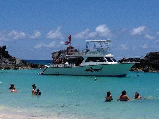 Dive Bermuda Boat