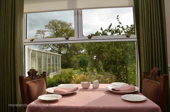Sallyport House : Breakfast garden view