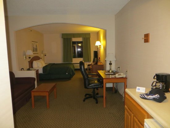 Comfort Inn & Suites: King Room.