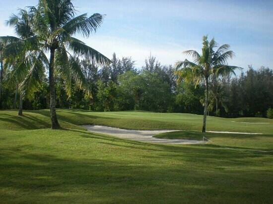 Dalit Bay Golf & Country Club : a look at the green