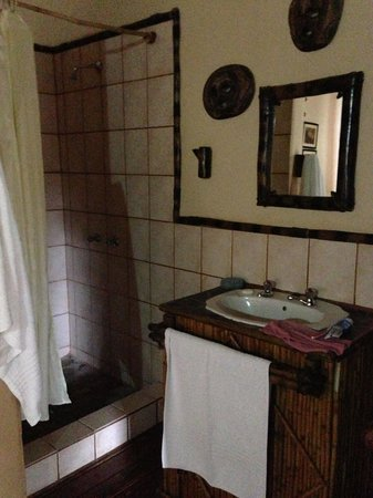 Moholoholo Game Lodge : Shower and wash area inside the chalet