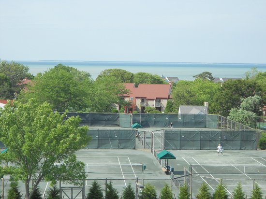 "Ocean Terrace: The ""View"""