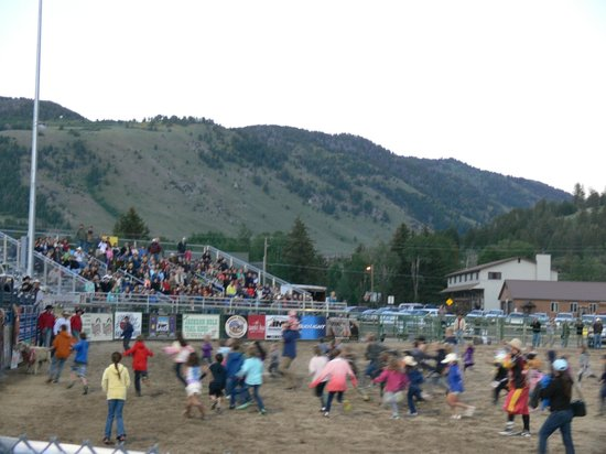 Jackson Hole Rodeo Grounds : The childrens' sheep chase