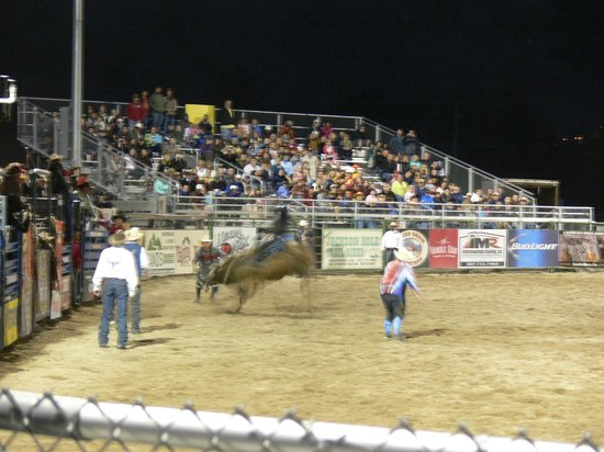 Jackson Hole Rodeo : That's one mad bull ... !