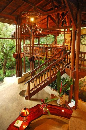 Playa Nicuesa Rainforest Lodge: Reception - Lobby