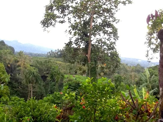Leging View Home Stay: Stunning view from your balcony/bungalow