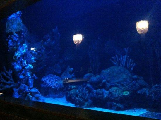 โรงแรมมาร์เดนพาเลซ: Aquamarine��