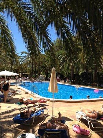 Cosmopolitan: Pool area!