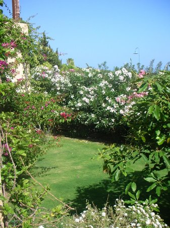 Hotel Mariposas : Le jardin devant la chambre