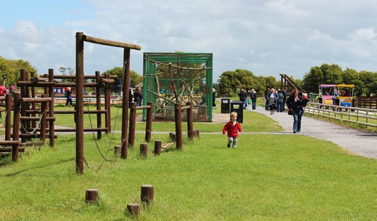 June 2013 Picture Of Animal Farm Adventure Park Berrow