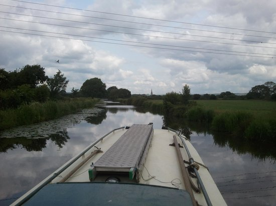 Chichester Ship Canal Trust: View from canal of Chichester Cathedral and Downs