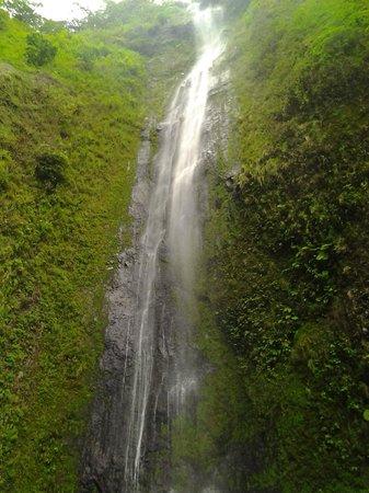 OmetepeHiker Day Tours: the hidden watefall