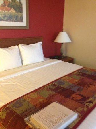 Residence Inn Houston by The Galleria : king size