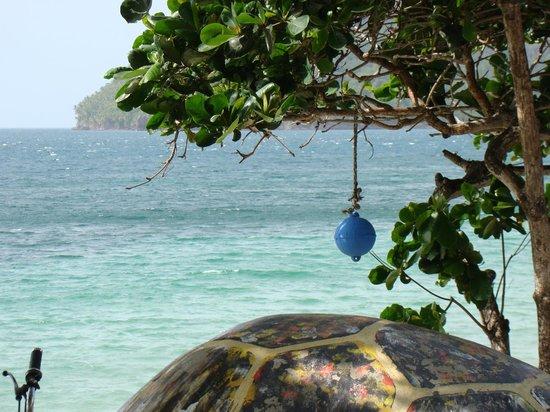 Deep Blue : Playa Allain bay La mejor