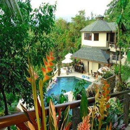 Buena vista luxury villas updated 2017 hotel reviews for Villas vista suites