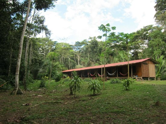 Monte Amazonico Lodge : Rooms at the lodge