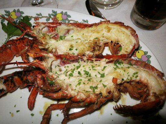 Villa Brunella: restaurante - deliciosa langosta