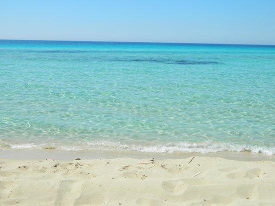 Angel Bay B&B Punta Prosciutto : spiaggia Punta Prosciutto
