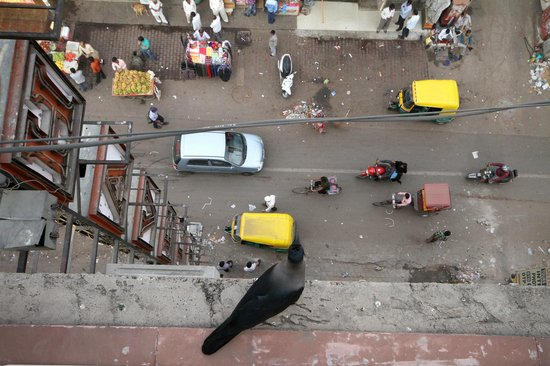 Hotel Lal's Haveli: View from rooftop dining area