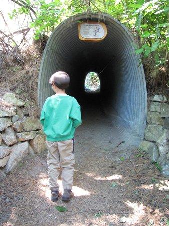 Lake Chelan State Park: Tunnel under the freeway along Little Bear Trail.