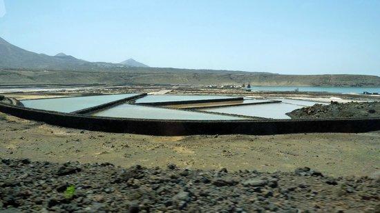 Blackstone Treks & Tours: Salt fields