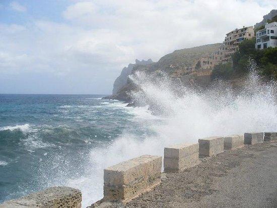 Grupotel Molins: The sea