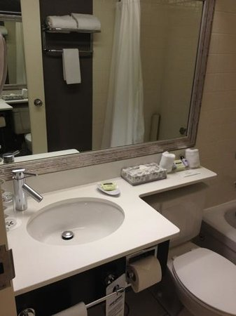 Cambridge Suites - Halifax: bathroom