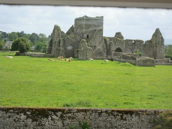 O'Briens Cashel Lodge: View from room, Cashel Lodge