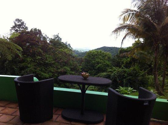 Carole's Rainforest Villas : View from the kitchen