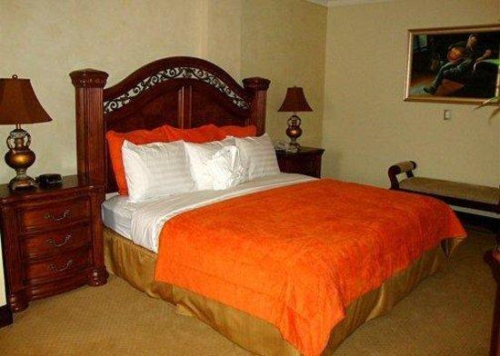 Clarion Suites Mediterraneo: Guest Room