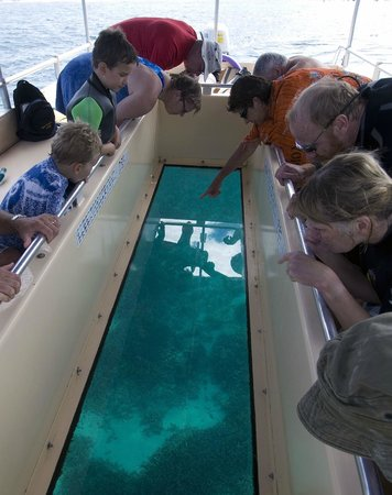 Marine Adventures: Glass viewing panel