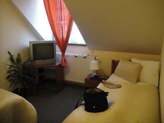 Hotel Tanzberg: Room