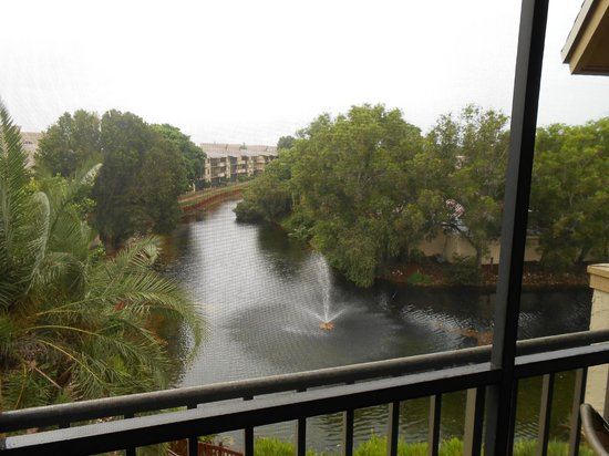 Park Shore Resort: Fountain/Lagoon