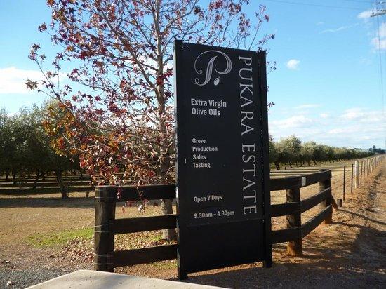Muswellbrook, Australia: Entrance driveway